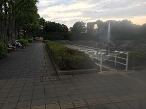 北浦和公園_噴水